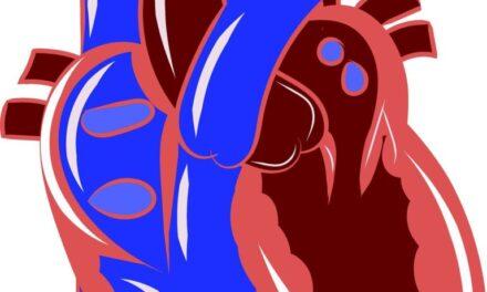Învățarea automată în prevenția bolilor cardiovasculare, mai eficientă odată cu includerea factorilor sociali și de mediu