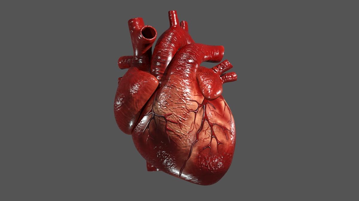 Cercetătorii au identificat un biomarker pentru bolile cardiovasculare
