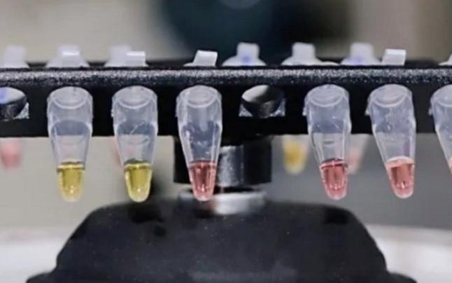 ELI LILLY începe faza finală a unui studiu clinic pentru un tratament cu anticorpi pentru COVID-19