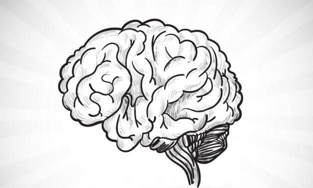 Unu din patru pacienți aflați în stare vegetativă în urma unui traumatism cranian sever are o recuperare bună