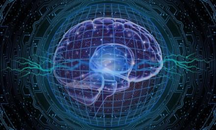 Mini-modelele de creier 3D ar putea accelera cercetarea tratamentelor pentru scleroza multiplă