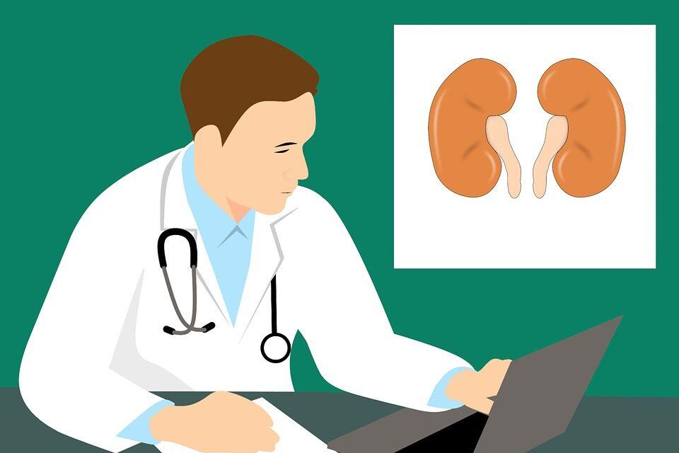 Forxiga – primul și singurul inhibitor de SGLT2 aprobat în Uniunea Europeană pentru tratamentul bolii cronice de rinichi la pacienții cu și fără diabet zaharat tip 2