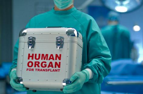 Ioana Mihăilă: Agenţia Naţională de Transplant poate achita cotizaţii către organisme internaţionale ce facilitează schimbul de organe